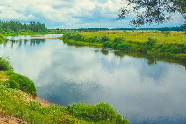 Куди пливе ріка Пад?   Родина